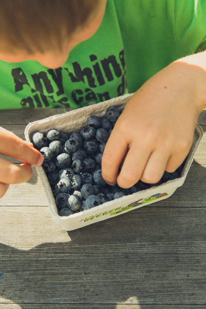 Child picks out blueberries from container