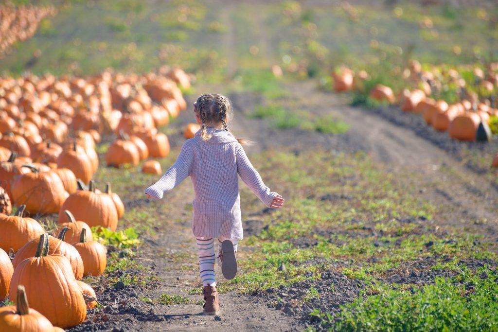 Little child skipping through pumpkin patch