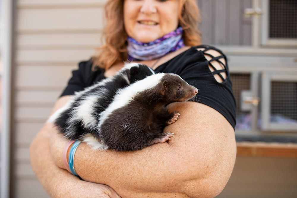 Precious Little Lambs female staff holding a skunk